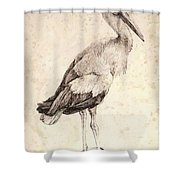 The Stork 1515 Shower Curtain