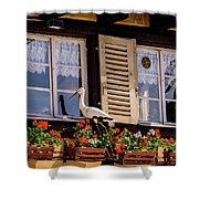 The Stork Has A Delivery - Colmar France Shower Curtain
