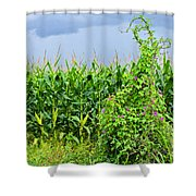The Storm II Shower Curtain