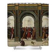 The Story Of Griselda Part II   Exile Shower Curtain