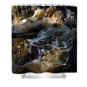The Stream 1 Shower Curtain
