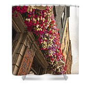 The Street Lamps Shower Curtain