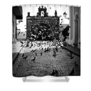 The Street Pigeons Shower Curtain by Perry Webster