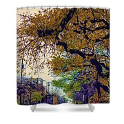 The Street Trees Shower Curtain