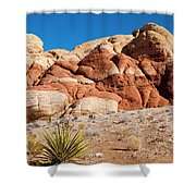 The Striped Rock Shower Curtain