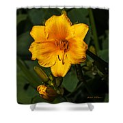 The Summer Blooms Shower Curtain