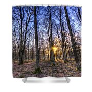 The Sun Ray Forest Shower Curtain