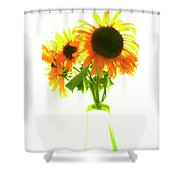 The Sunflowers In A Glass Vase. Shower Curtain