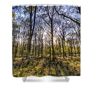 The Sunset Forest Shower Curtain