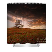 The Sunset Of The Poppies - 2 Shower Curtain