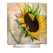 The Sunshine Of God's Love Shower Curtain