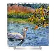 The Swan Shower Curtain
