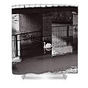The Swan Story Shower Curtain