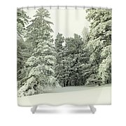 The Sweep Of Snow Shower Curtain