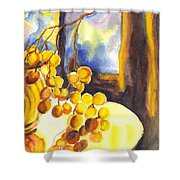 The Sweeter The Grapes Shower Curtain