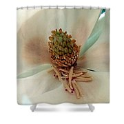 The Sweetest Magnolia Shower Curtain