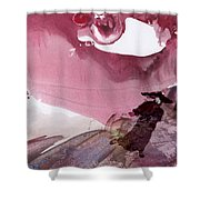 The Tears Of Mont Fuji Shower Curtain