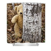 The Teddy Bear In The Woods Shower Curtain