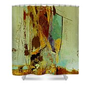 The Testimony Shower Curtain