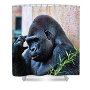 The Thinking Gorilla Shower Curtain