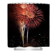 The Three Daisies Shower Curtain by David Patterson