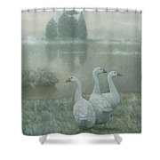 The Three Geese Shower Curtain