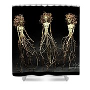 The Three Graces Dance Shower Curtain