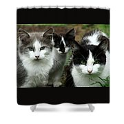 The Three Of Us Shower Curtain