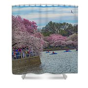 The Tidal Basin During The Washington D.c. Cherry Blossom Festival Shower Curtain