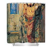 The Toilette 1885 Shower Curtain