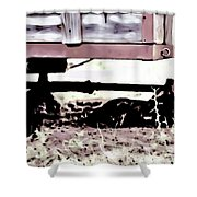The Trailer Shower Curtain