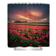The Tranquil Morning Before Sunrise Shower Curtain