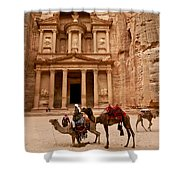 The Treasury Of Petra Shower Curtain