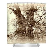 The Tree - Sepia Shower Curtain