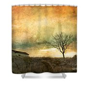 The Tree And The Roof Top Shower Curtain