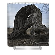 The Tree Creature Shower Curtain