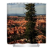 The Tree In Bryce Canyon Shower Curtain
