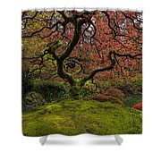 The Tree In Spring Shower Curtain