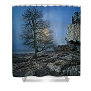 The Tree Of Inis Mor Shower Curtain