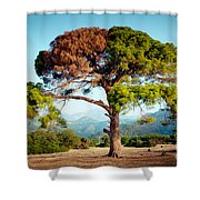 The Tree Of Life And Dead Shower Curtain