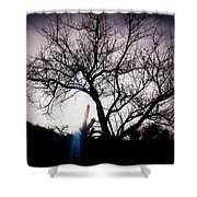 The Tree Of Wisdom Shower Curtain