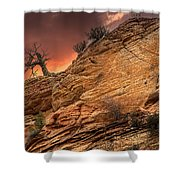 The Tree Of Zion Shower Curtain