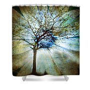 The Truth Of Trees Shower Curtain