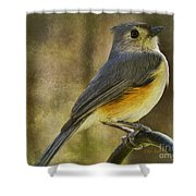 The Tufted Shower Curtain