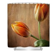 The Tulips Shower Curtain