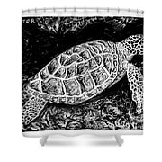 The Turtle Searches Shower Curtain