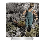 The Twelve Gifts Of Birth - Talent 1 Shower Curtain