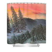 The Twisted Forest Shower Curtain