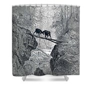 The Two Goats Shower Curtain