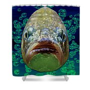 The Ugliest Fish Ever Shower Curtain